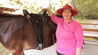 How to Properly Fit A Saddle On Your Horse
