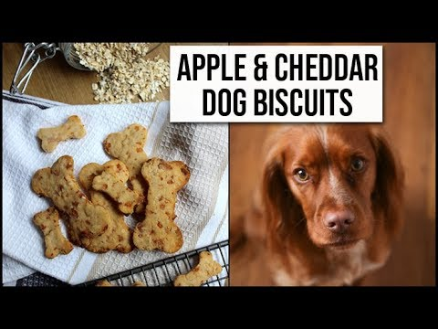 Easy Healthy Le Cheddar Dog Biscuit Recipe Xameliax You