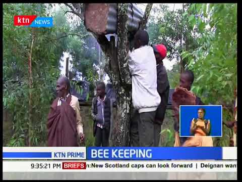 German Embassy partners with bee keepers from Makueni County to export honey to Europe