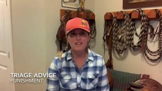 Punishment for Horse Behaviour Problems
