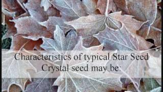 Crystal Children - Star Seeds