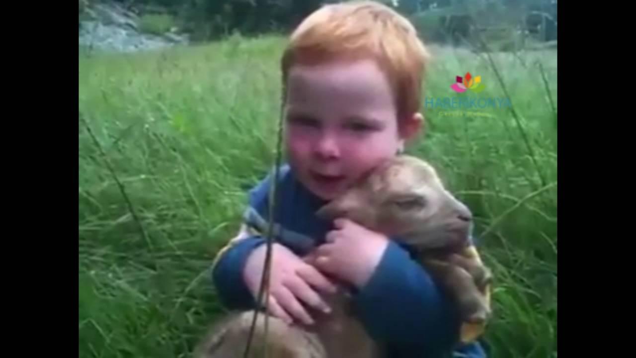 Küçük Çocuğun Kuzu Sevgisi