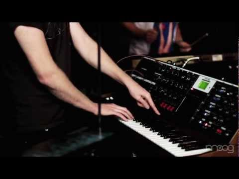 Little Dragon | Little Man | Moog Sound Lab