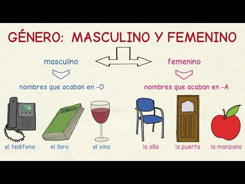 Tu Escuela De Español