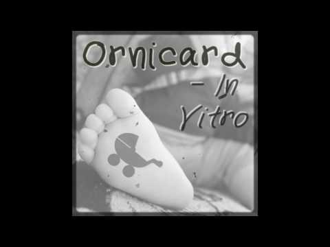 ORNICARD - In vitro (Chanson sur l´infertilité et le désir d´enfant)