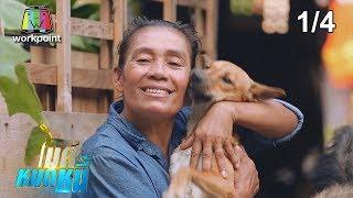 ไมค์หมดหนี้ EP.631   1/4   ป้าสำเนียงใจบุญดูแลสุนัขจรจัดแม้ตัวเองจะลำบาก   20 ส.ค. 62