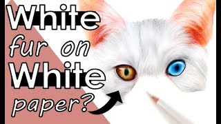 How to Draw WHITE FUR on WHITE PAPER | Step-by-Step Tutorial