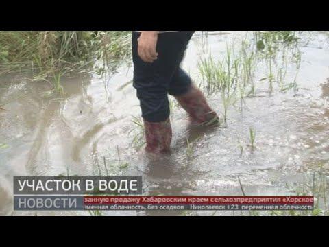 Участок в воде. Новости. 12/08/2020. GuberniaTV