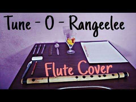 Tune O Rangeelee   Flute cover   Paper Pen Version