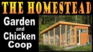 HOMESTEAD GARDEN AND CHICKENS. A tour of the chicken coop.