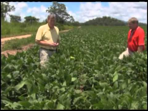 U.S. Farm Report: Africa: Tanzania to Mozambique