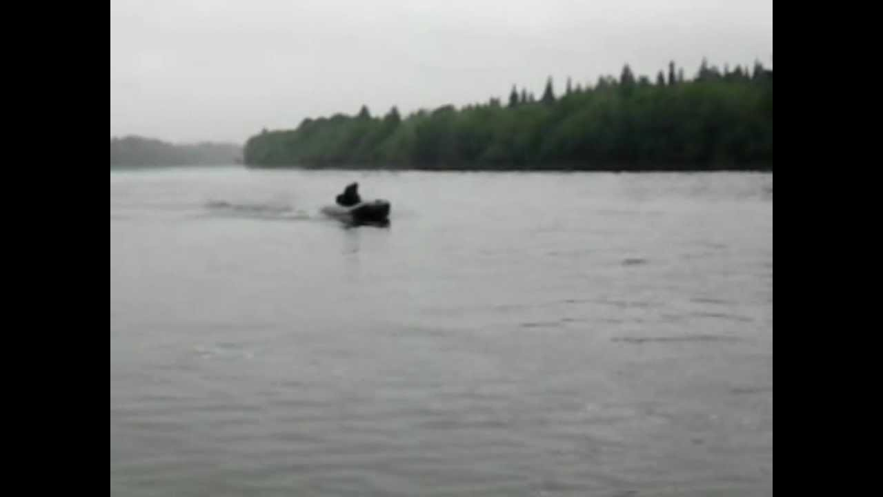 Лодка Ривьера 3200 и мотор HDX 5 л с - YouTube