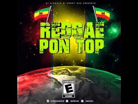 New Reggae Mix (May 2015) Chronixx, Jah Bouks,Vybz Kartel,Dann I, Reggae Pon Top.