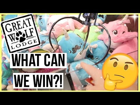 What can we Win at Great Wolf Arcade in Garden Grove?!