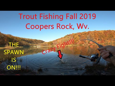 Trout Fishing Fall 2019 || Coopers Rock, Wv.