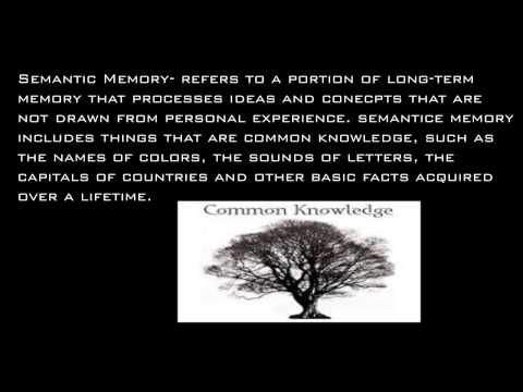 Semantic Memory (AP Psych)