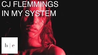 CJ Flemings - In My System