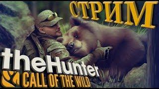 TheHunter: Call of the Wild (Добываем золотых животных в Европе по основному квесту.)
