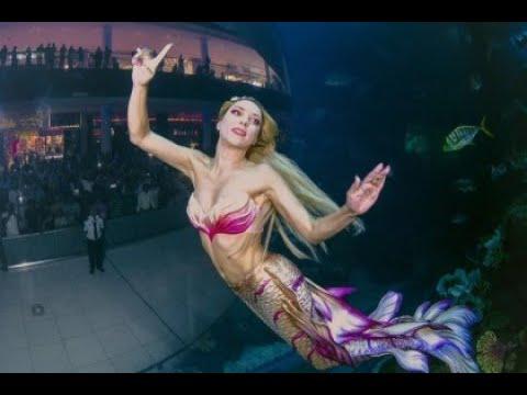 Mermaids Dubai Mall Aquarium 2017