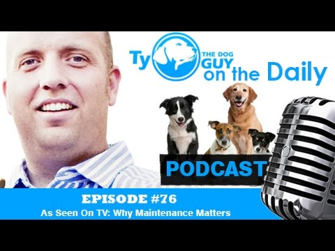 episode-#76---as-seen-on-tv:-why-maintenance-matters---utah-dog-training
