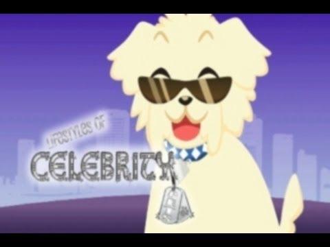 Lifestyles of Celebrity Pets TV Show : Full Episode Miami Beach Florida