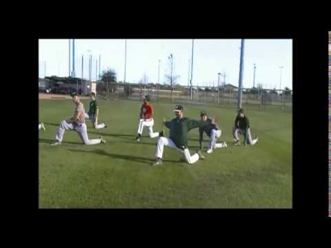 2015 Viera Hawks Baseball