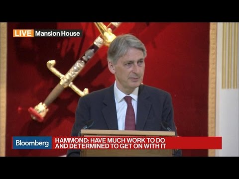 Hammond Says Britain Weary After Seven Years of Hard Slog