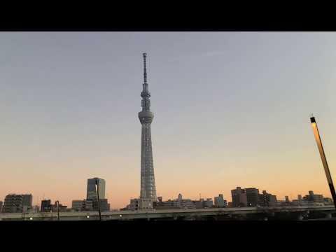 a-month-in-tokyo