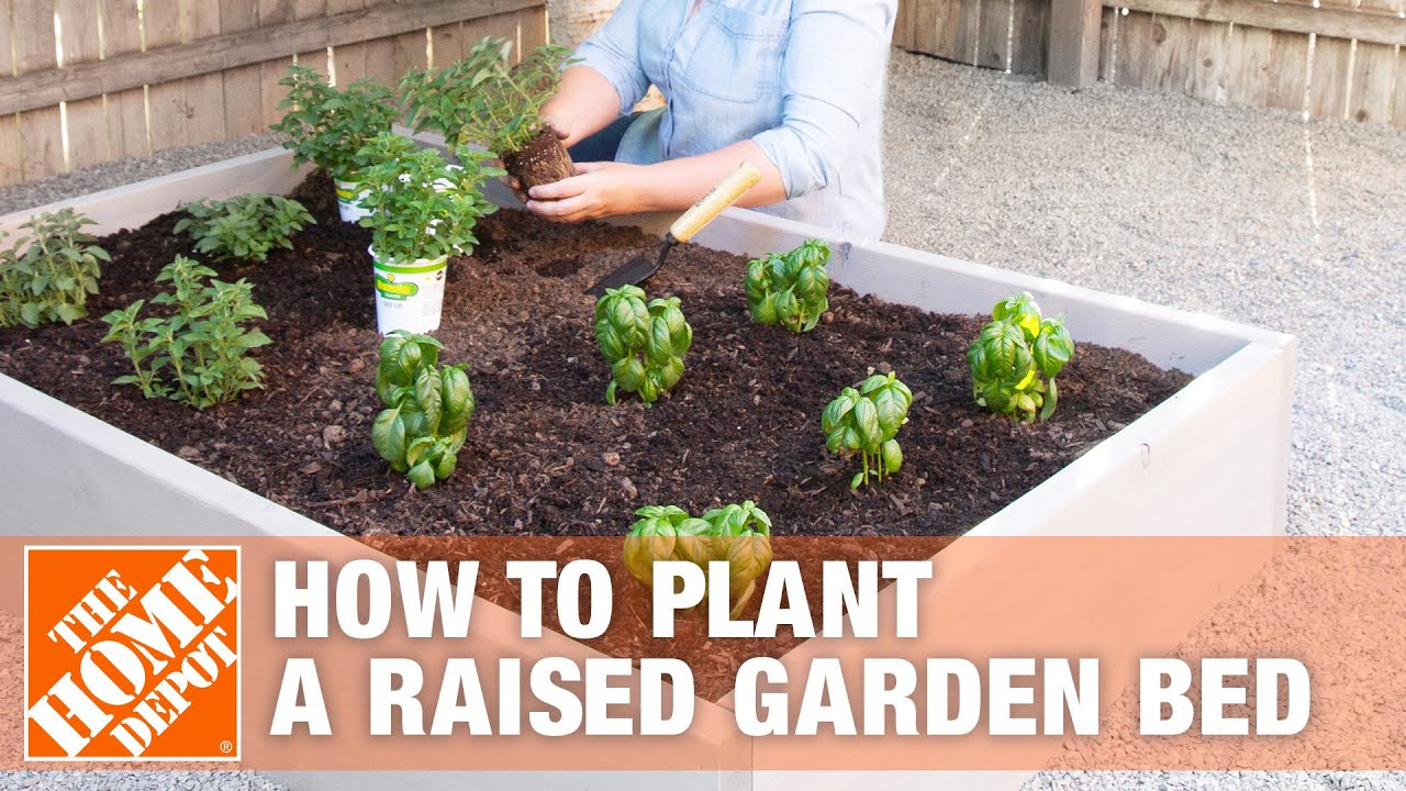 How to Plant a Raised Garden Bed | The Home Depot Raised Planter Box Home Depot on home depot wooden planter boxes, home depot wood planter box, home depot raised container, home depot pool deck box, home depot raised garden,