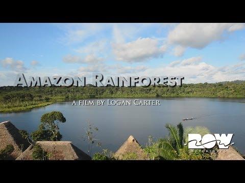 Amazon Rainforest Tours - Napo Wildlife Center