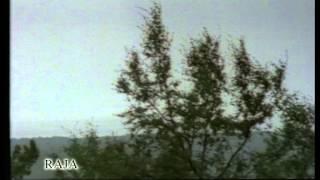 Raja / The Border (2007)