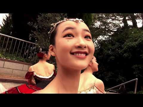 バレエの街 Kobe ♯1【神戸の街にはバレエの妖精がいる 】 Prima Stella Ballet By Takashi Setoguchi Ballet We love Kobe