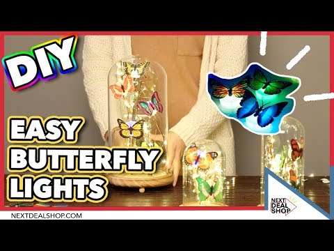 DIY Glass Dome Lights with LED Butterflies! - Easy and Simple Lighting Decor - Next Deal Shop