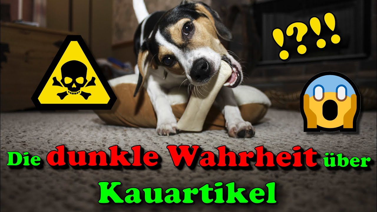 Kauartikel - Vorsicht beim Kauf !!! / Kauartikel Hund - die dunkle Wahrheit !! / Nature Trails