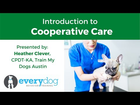 Cooperative Care- Getting Your Dog To Opt In to Vet Visits, Grooming, and Handling