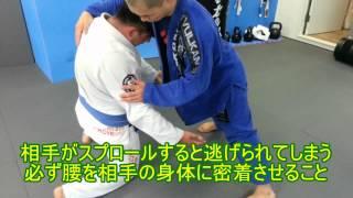 テイクダウン 格闘技 - ブラジリアン柔術