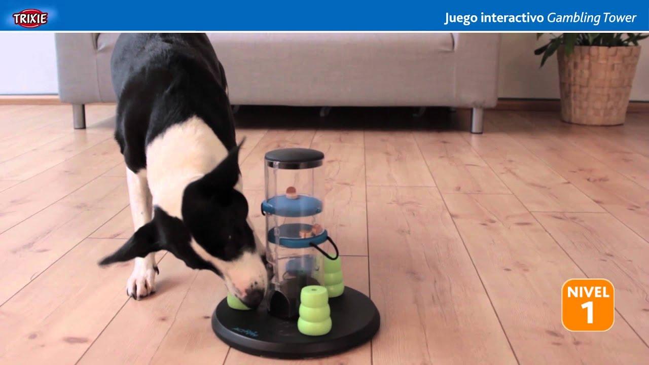 Trixie Dogactivity Gamblingtower Juguete De Inteligencia Para Perros Youtube