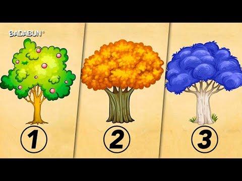 Elige un árbol