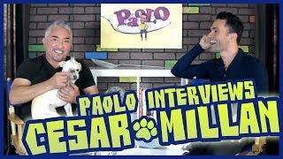Cesar Millan On Training Dogs & His New Show