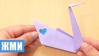 поделки из бумаги своими руками лебедь видео