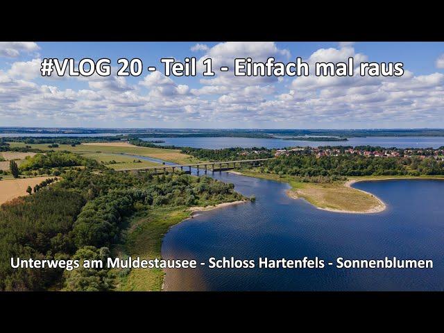 4k // VLOG #020 - Teil 1 - Muldestausee - Schloss Hartenfels Torgau - Sonnenblumenfeld