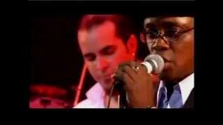 Musica Cubana - El concierto Pio Leiva y los hijos de Cuba - en vivo en Tokio - Live in Tokyo