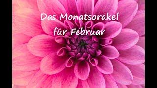 Monatsorakel Für Februar 💐