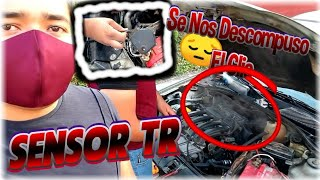 Download Sensor TR Como calibrar el sensor TR Renault Clio Platina Falla sensor TR al clio