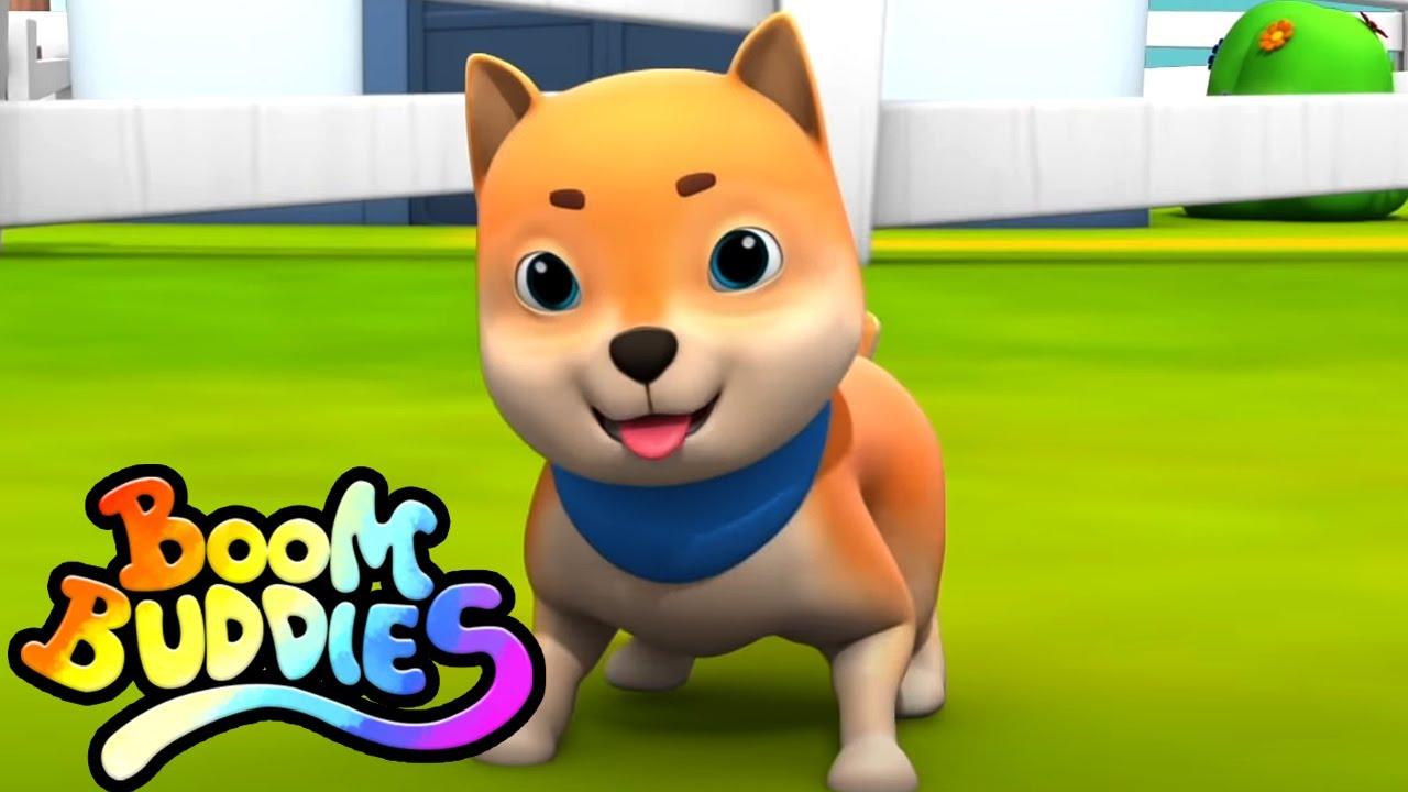Bingo el perro   Música para niños   Educación   Boom Buddies Español   Dibujos animados