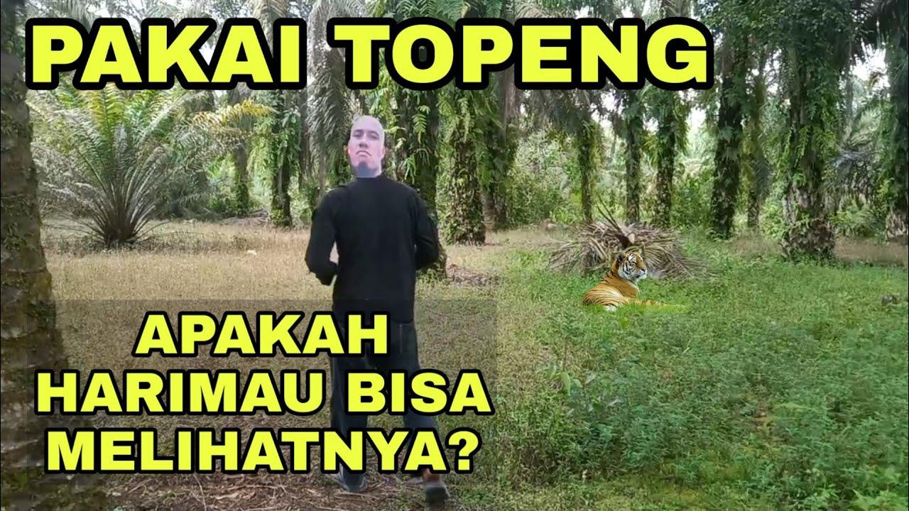 PAKAI TOPENG DI HUTAN HINDARI HARIMAU. Fh88