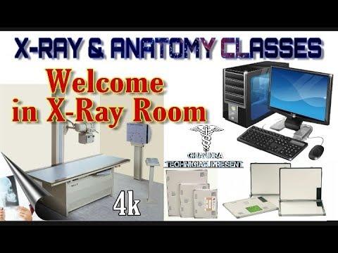 X-Ray Room    Equipment    Use In X-Ray    Chandra Technician