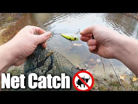 Fishing for BASS but catching a CAST NET - This is REALISTIC FISHING!