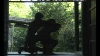 видео Ниндзюцу