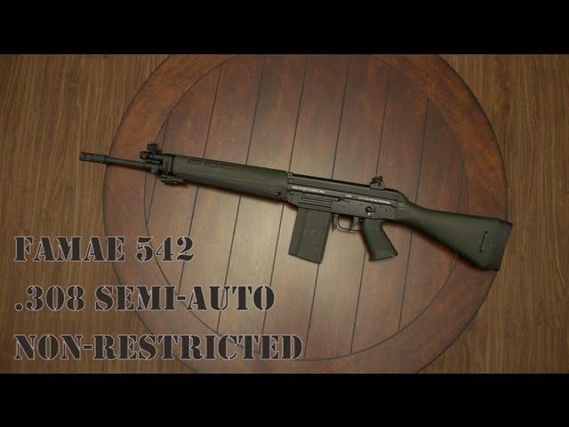 FAMAE SG542 .308 Semi-Auto Chilean Rifle Hands On aka Sig SG 540